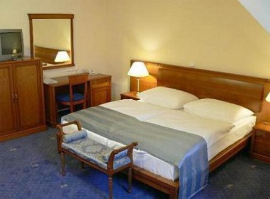 Photo of Hotel Modra Ruze Prague