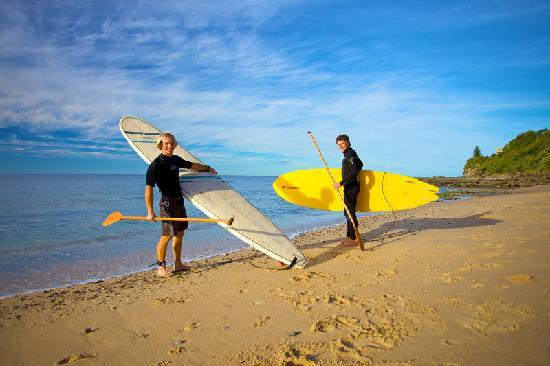 free stand up paddle surfing - picture of caloundra backpackers