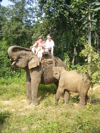 Eurana Boutique Hotel: Elephant Trek in the jungles of Chiang Mai