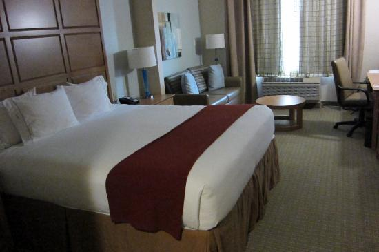 Holiday Inn Express Hotel & Suites: Standard Room