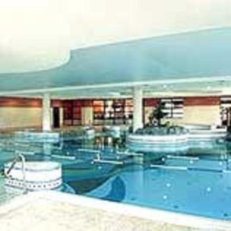 Fitzgerald's Woodlands House Hotel: Pool View