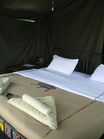 Serengeti Halisi Camp: Wohnzelt