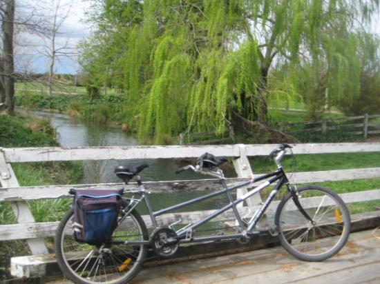 Olde Mill House B &amp; B &amp; Cycle Hire: Marlborough