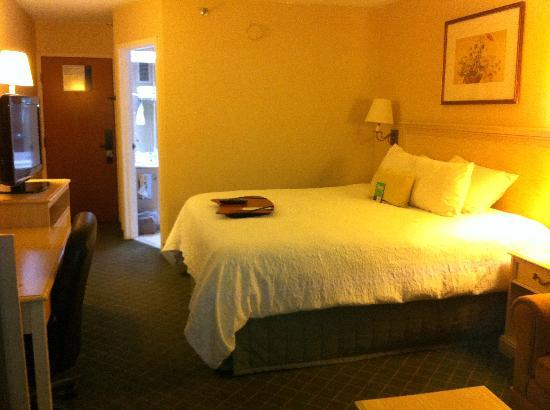Hampton Inn Winchester-University/Mall: Spacious, clean, comfy room