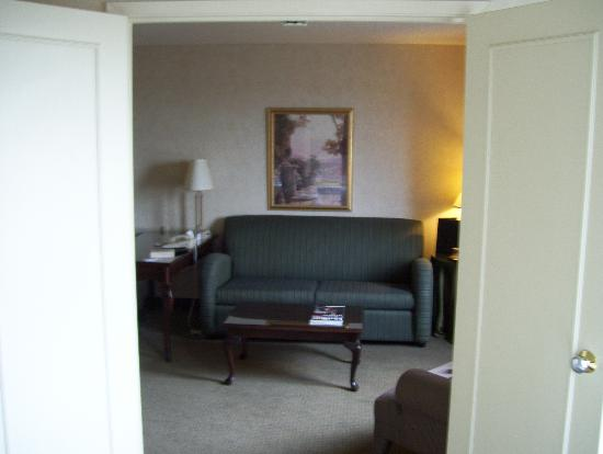 Radisson Suite Hotel Toronto Airport: ideal stay after or before a long flight
