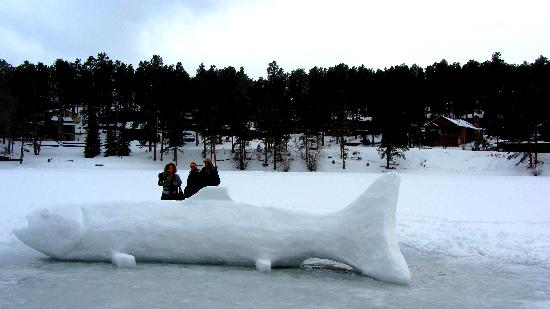 My friends with a huge snow fish some ice fishers made for Evergreen lake fishing report
