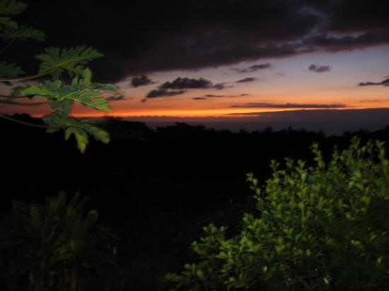 Hale Ho'ola B&B: sunset view from lanai