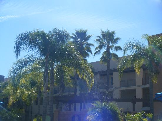 Grand Pacific Palisades Resort and Hotel: view