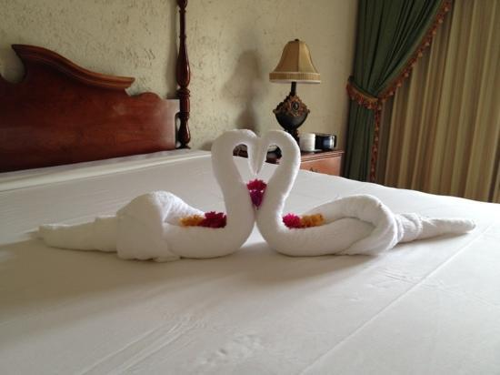 Braco Village Hotel & Spa: every day a different swan
