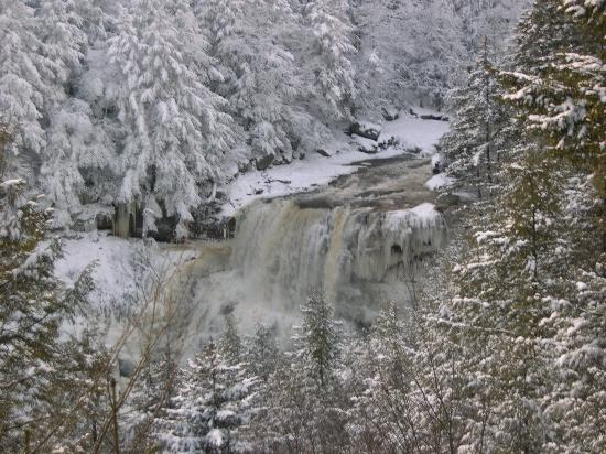 Blackwater Falls State Park Lodge: Blackwater Falls in winter's majesty