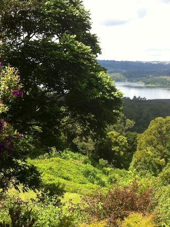 Montville Misty View Cottages: View from deck