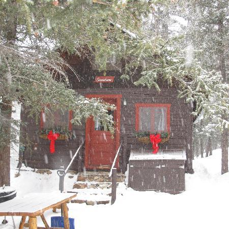 Pioneer Guest Cabins: cute little cabin in the woods
