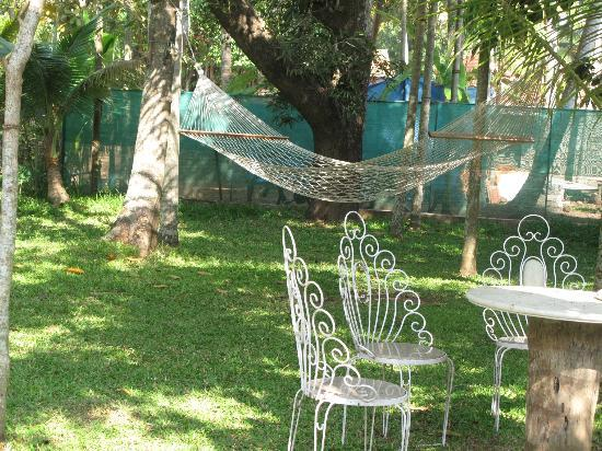 Akkarakalam Memoirs: one of two hammocks in garden
