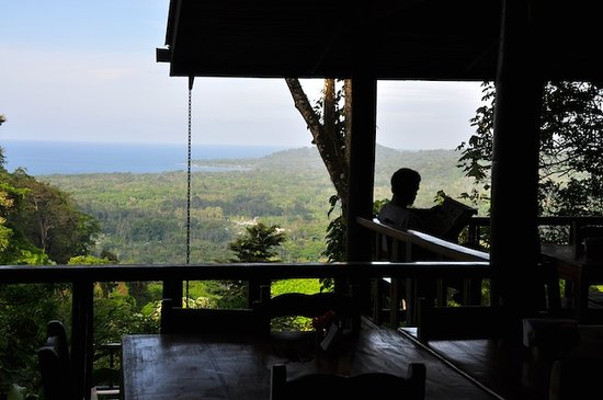 Samasati Nature Retreat: Beautiful view from the restaurant
