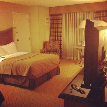 Hilton Washington Dulles Airport: Another view of room
