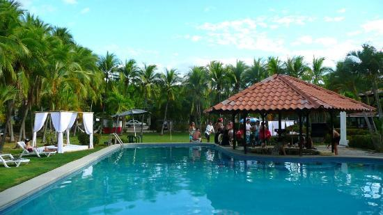 Pure Vibes Backpackers Resort: Pool view