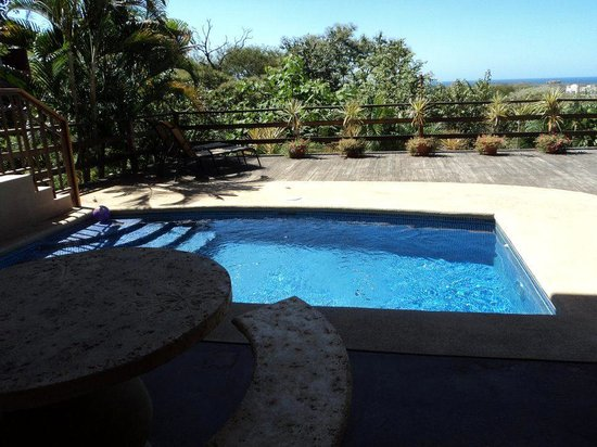 Mirador B&B: Pool overlooking ocean