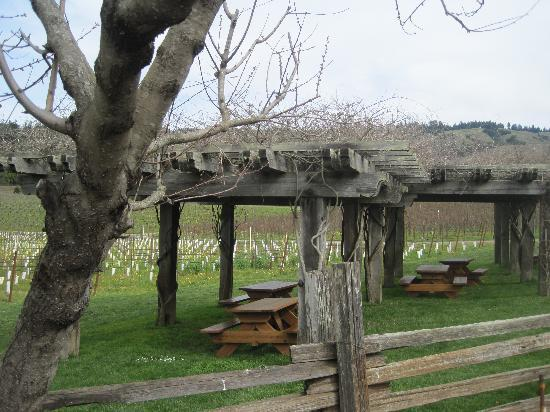 Philo, CA: Navarro Winery picnic area