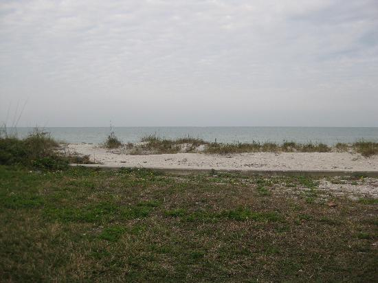 Belleair Beach, FL: view from our walk out patio, ocean front