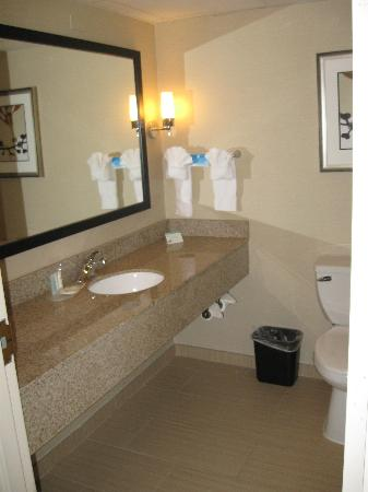 Comfort Suites Chantilly: Bathroom