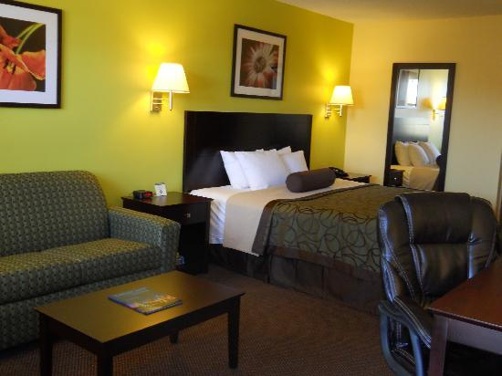 BEST WESTERN Executive Inn: King Room