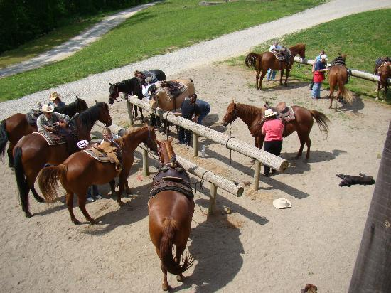 KD Guest Ranch: Getting Saddled for the Ride