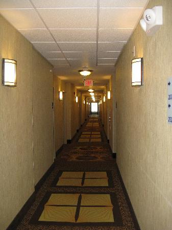Holiday Inn Express Hotel & Suites Richwood-Cincinnati South: Hall