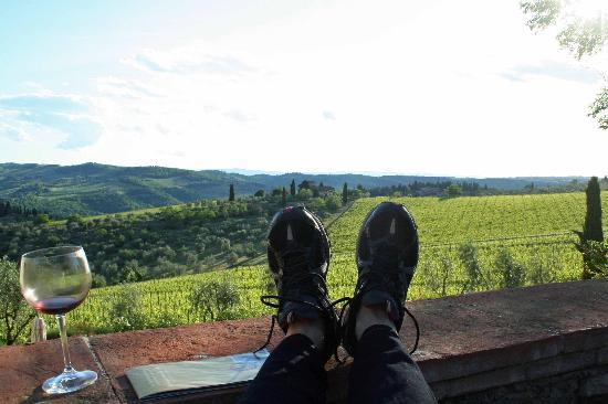 Panzano in Chianti, อิตาลี: Early evening gazing out at the vineyards