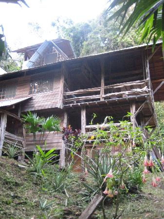 Photo of Amarongachi Jungle Eco-Lodge Tena
