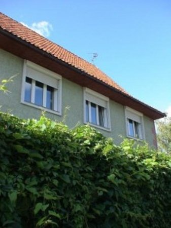 RentKaliningrad Apartments and Guesthouse