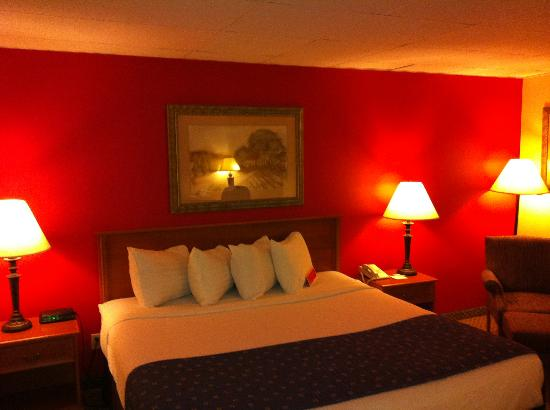Ramada Hays Convention Center Hotel: Our second room