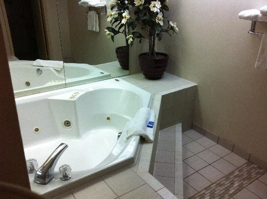 Ramada Hays Convention Center Hotel: Jacuzzi tub!