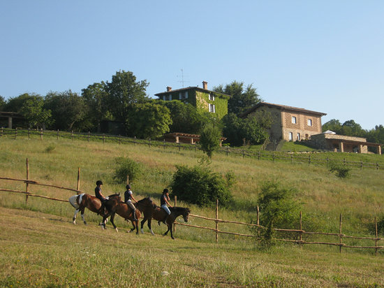 Photo of La Cenerara Piacenza