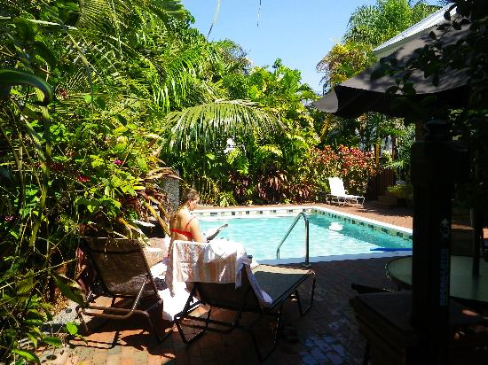 Travelers Palm Inn: relaxing by the pool
