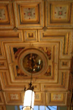 fancy-ceiling-excuse.jpg