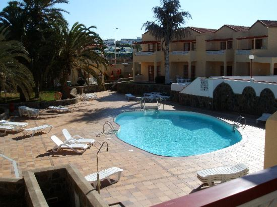Koala Garden Suites: A typical pool area
