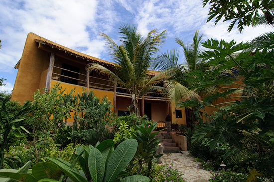 StevieWonderLand: Tropical Garden surounds our Guest House