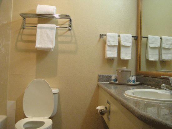 Comfort Inn &amp; Suites: bathroom