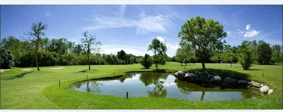 La Foresteria Canavese Country Club : Golf 