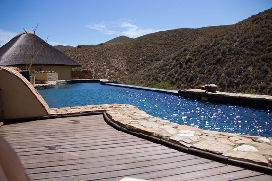White Lion Lodge: Warm saline pool