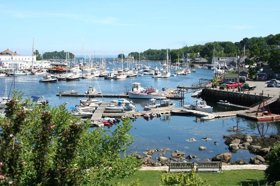 ... very nice crew - Review of Schooner Surprise, Camden, ME - TripAdvisor