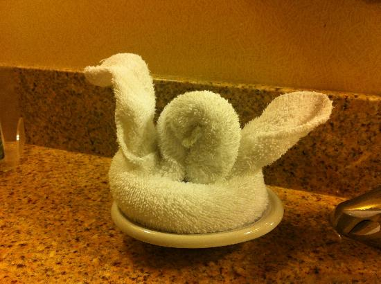 Homewood Suites Dulles - North / Loudoun, VA: Swan Towel