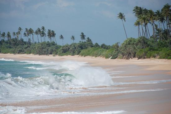 Tangalle, Sri Lanka: plage 2