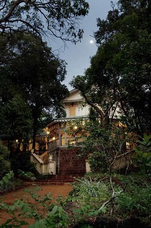 The Verandah in the Forest