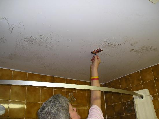 Econo Lodge Brossard: And more mold