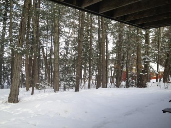 Holiday Acres Resort: The beautiful Northwoods in winter.