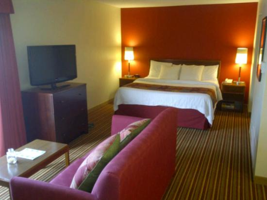Residence Inn St. Louis Chesterfield: Living Room and Bed Room