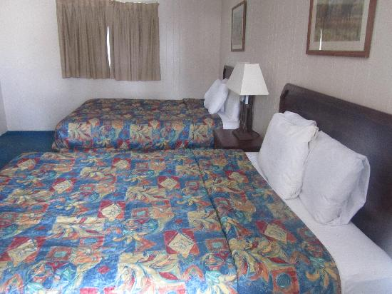Arrowhead Motel: DOUBLE QUEEN ROOM WITH FRIDGE AND MICROWAVE