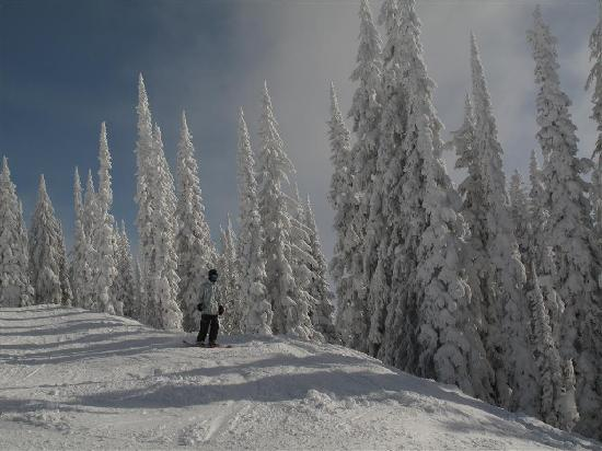 BEST WESTERN PLUS Revelstoke: Revelstoke Ski Area - Famous Powder