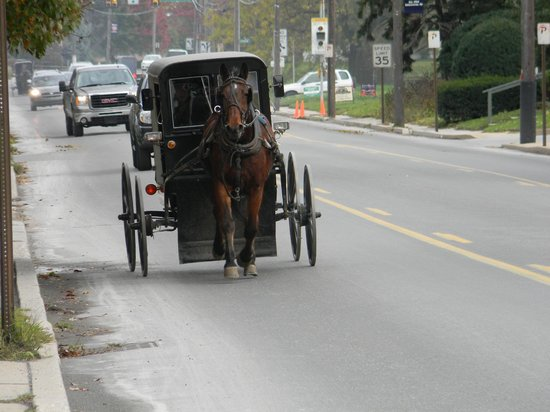 Inn at Kitchen Kettle Village: Loved seeing and hearing the Amish buggies from our room, while touring the Village at Kitchen K
